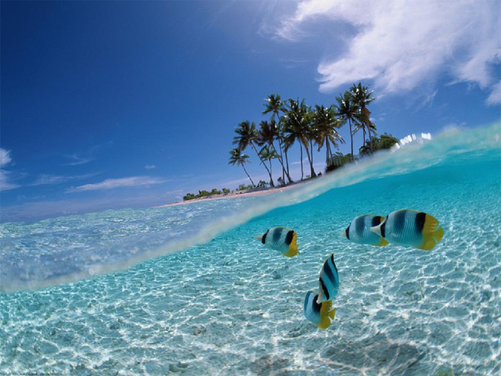 Куба. Раскрась свой отпуск!